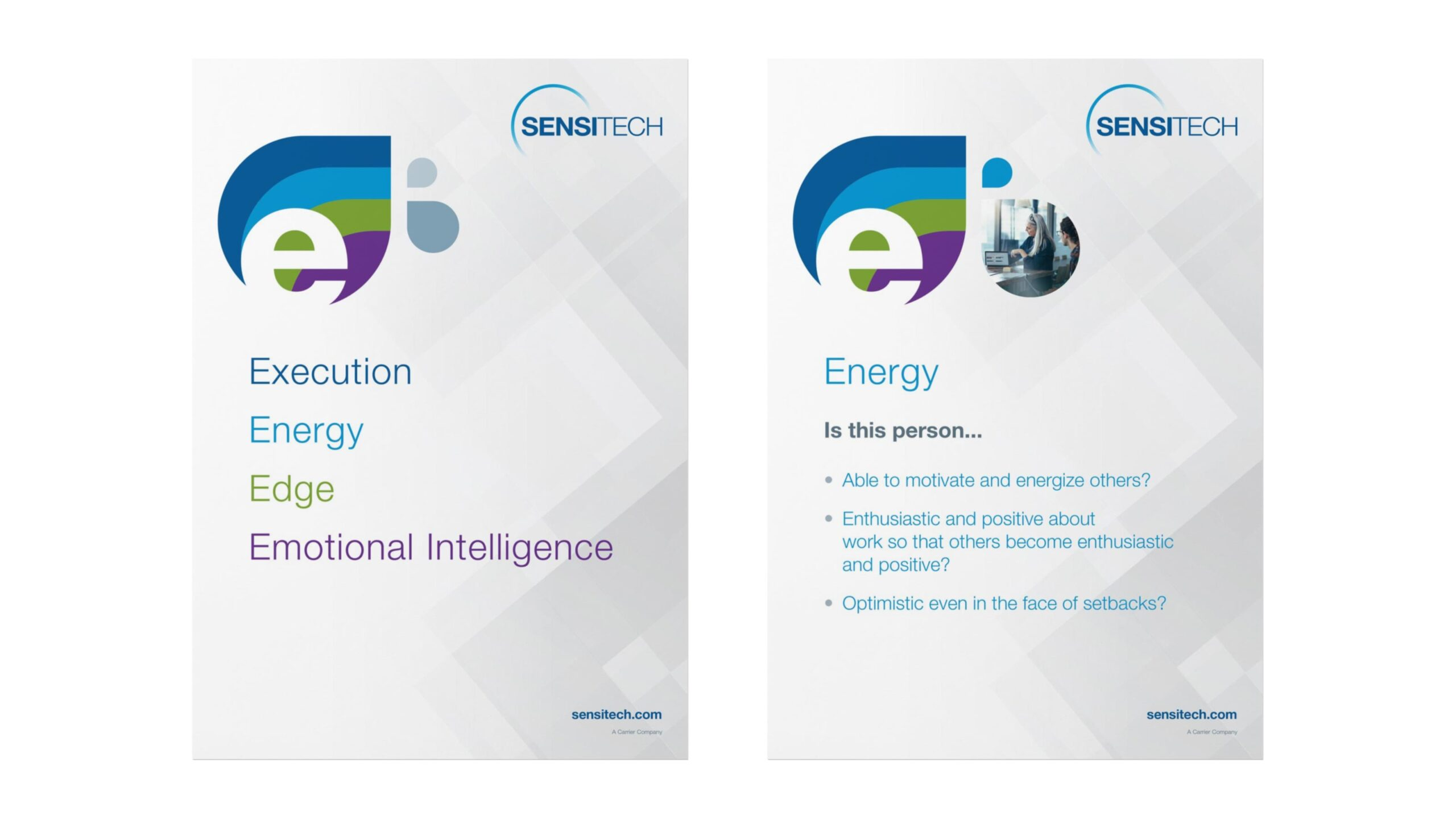Sensitech Values Posters